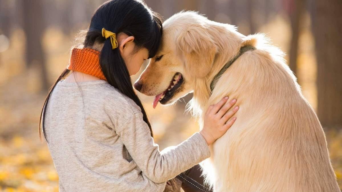 Βίωμα και μέρος της παιδείας καθενός, ο σεβασμός των ζώων